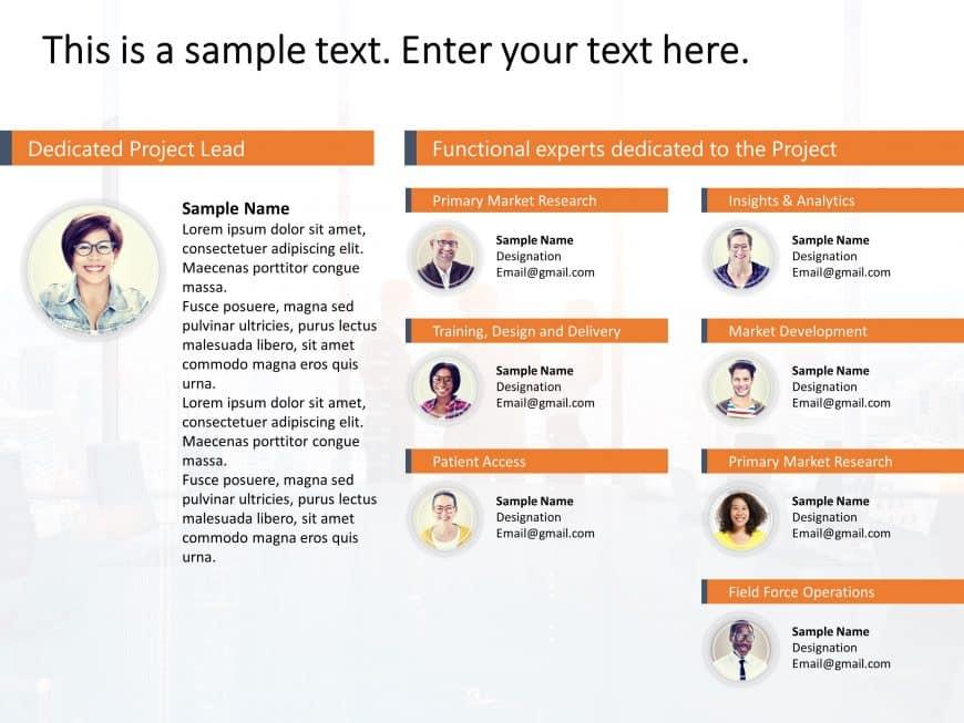 Project Team Organization Chart