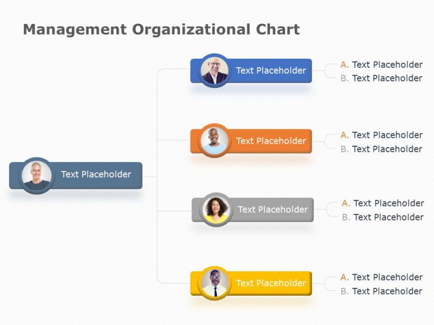 organization chart 10