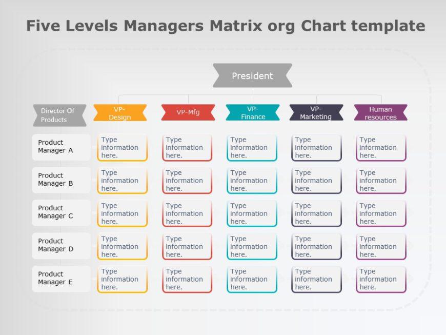 organization chart 11
