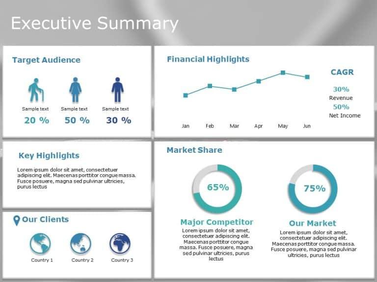 Executive summary PowerPoint Template 13